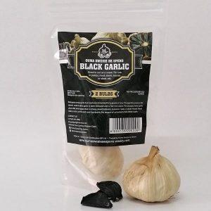 Black Garlic - 2 Bulbs